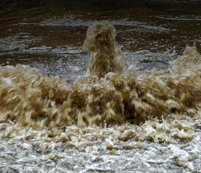 Water Damage Tips for Dealing With Sewage Damage