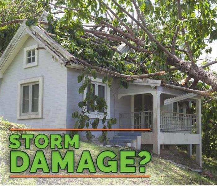 Why SERVPRO Who Handles Disaster Remediation in Your Community?