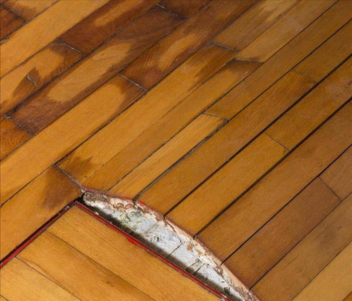 water damaged wood flooring lifting off pad