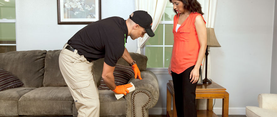 Kansas City, MO carpet upholstery cleaning